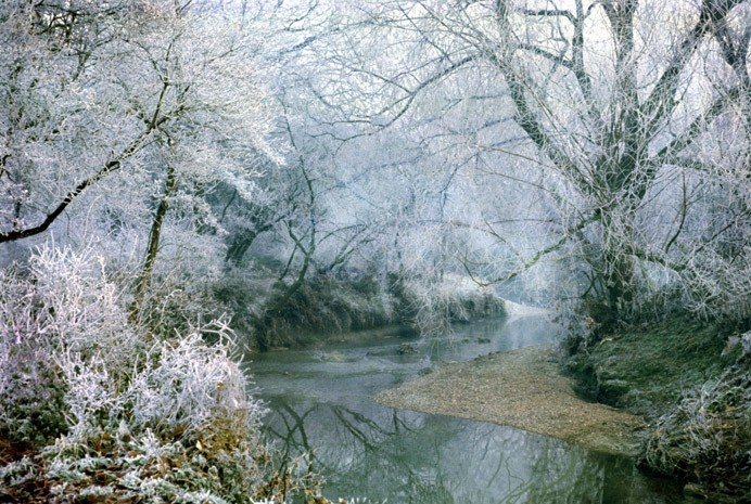 Lothlorien - River Brent in Frost by Clive Hicks was the winner of this year's Living Waterways of North and West London Photo Competition