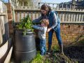 composting in a garden