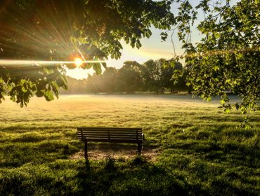 Toby Cross - early morning on Ealing Common