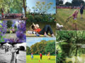 Love Your Place: Summer photo contest - shortlisted entries collage