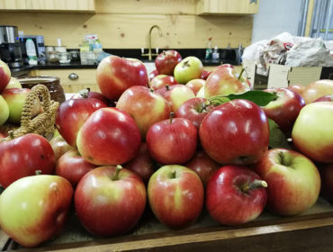 Horsenden Farm apples