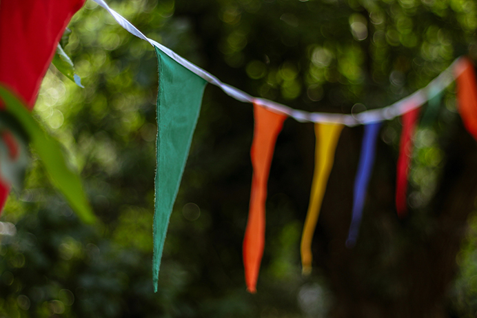 Bunting in a garden